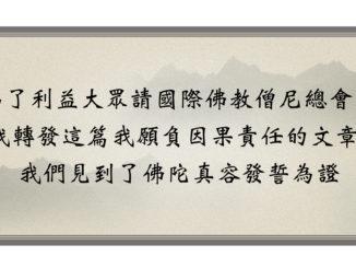 頂禮南無第三世多杰羌佛-為了利益大眾請國際佛教僧尼總會為我轉發這篇我願負因果責任的文章- 我們見到了佛陀真容發誓為證