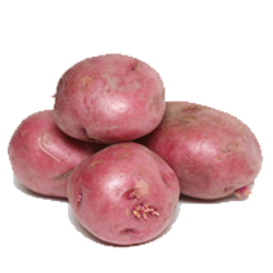 Red Potatoe