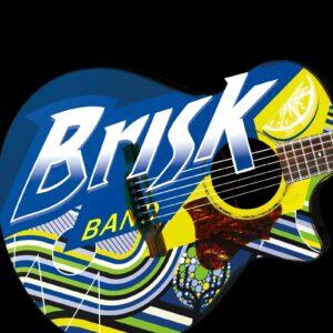 BRISK TRIO