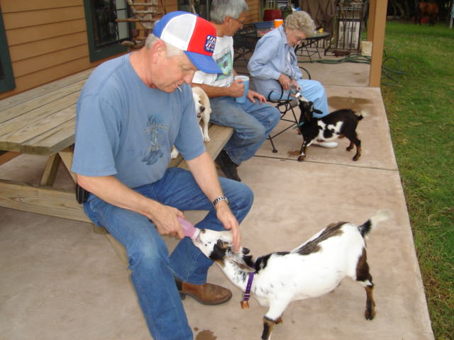 Ricky with goats