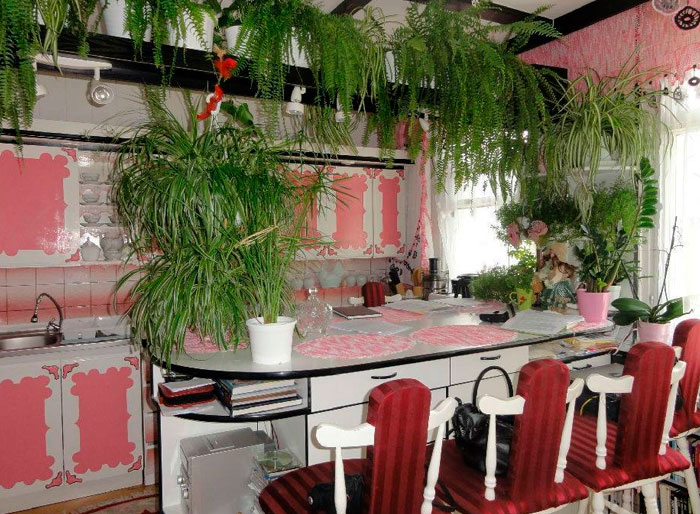 retro kitchen design with hanging foliage and potted plants
