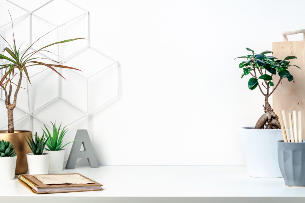 A white stone desk with many oplants styled on top.