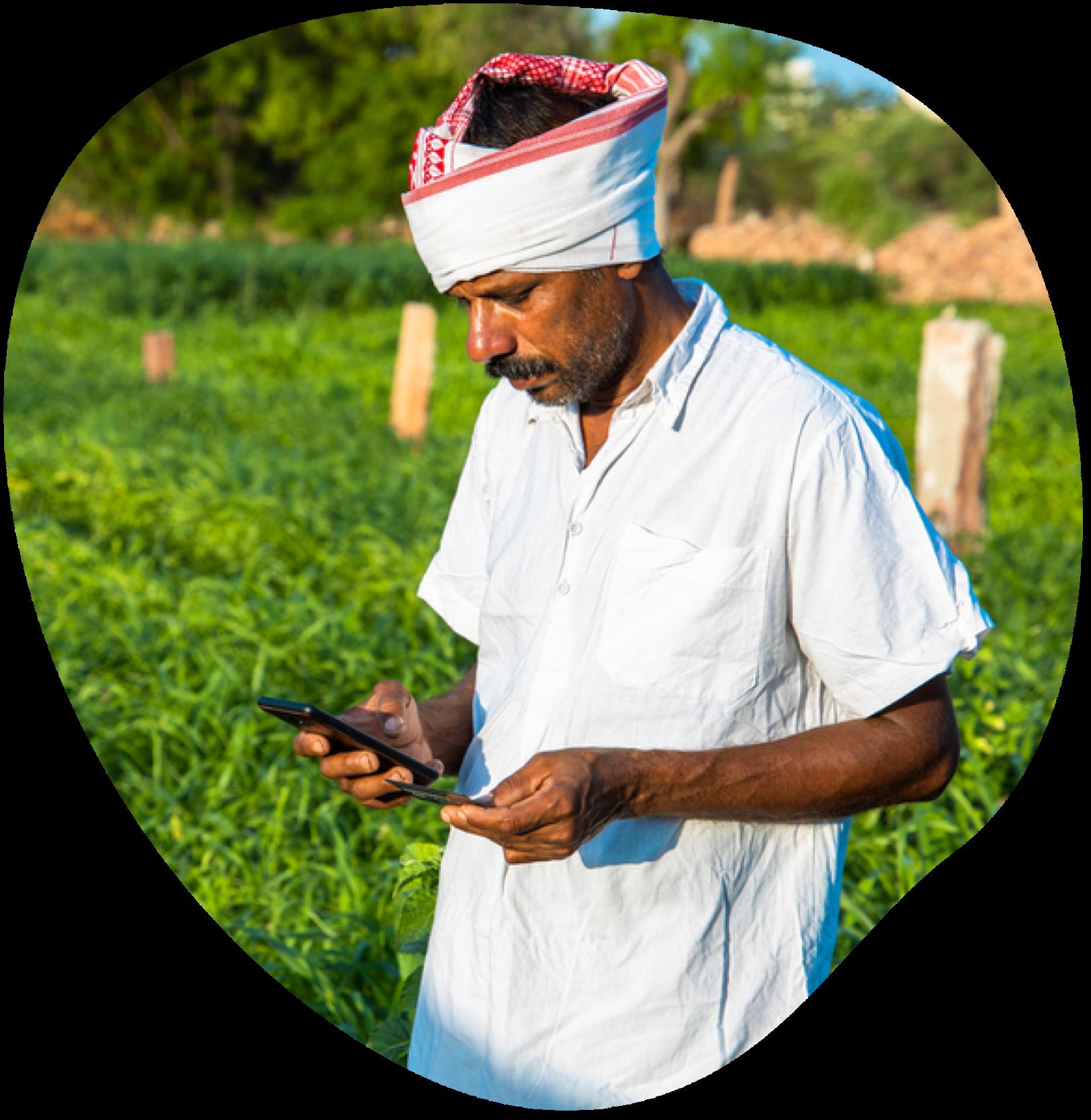 Farmer looking at phone