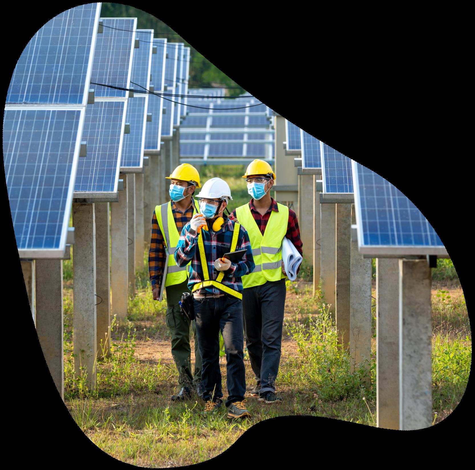 People in hard hats walking through solar panel field