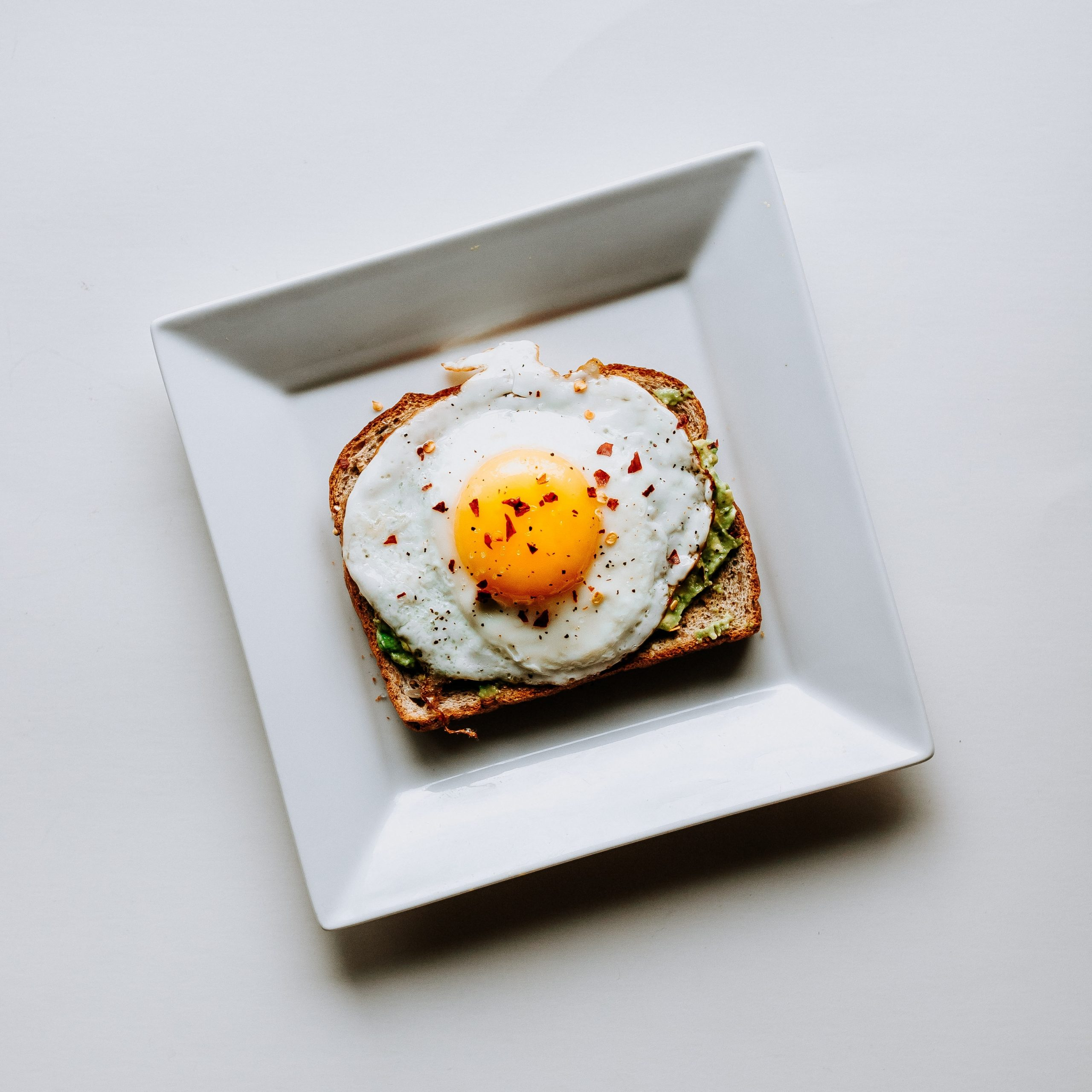 toasted wheat bread with fried egg