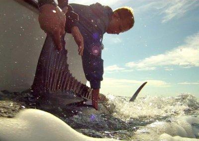 Bill Fishing