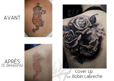 5 Sessions Tiffany Tiger Cover Up 1