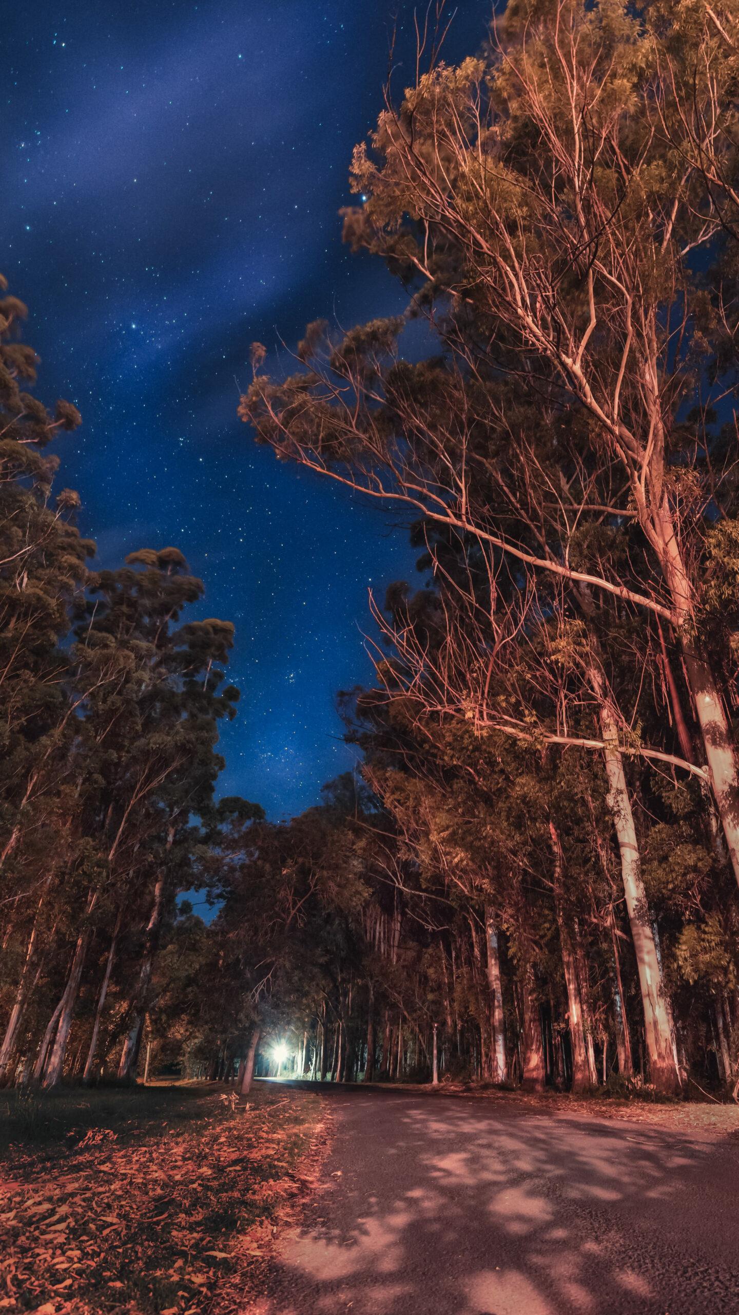 Fondo de pantalla Noches de Alberdi de Sol por Emilio Küffer