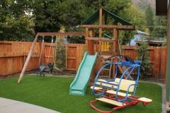 back yard turf