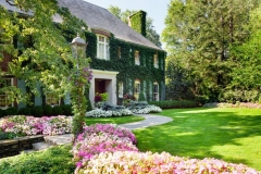Beautiful Home with Ivy on house
