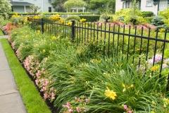 garden-fence copy