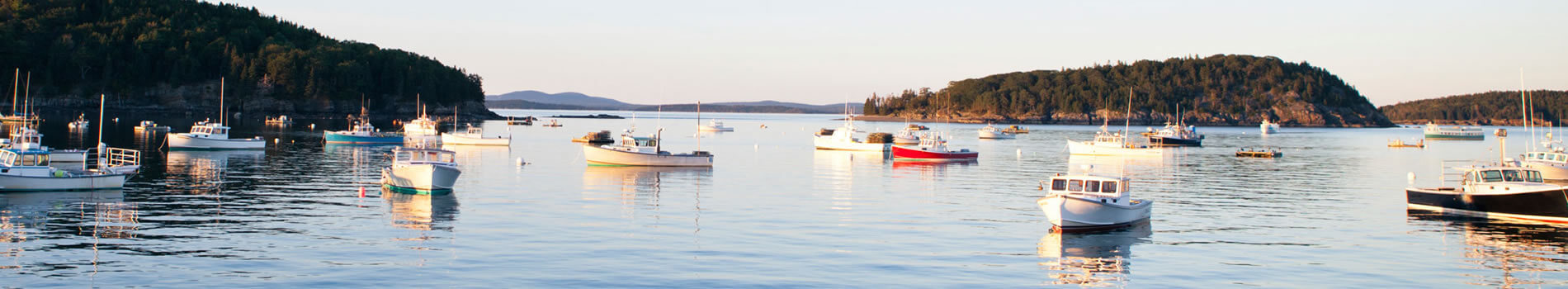 Banner image for About Us section of the website.  Image is of boats in a harbor.