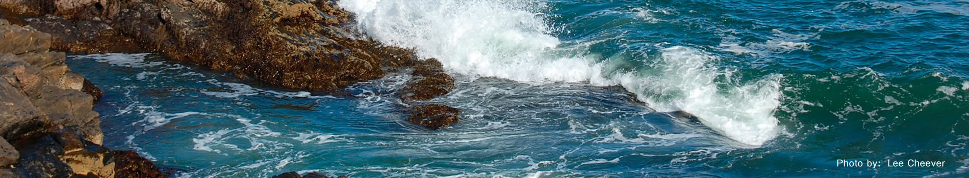 Banner image for Resource Partners section of the website.  Image is of waves crashing on rocks.