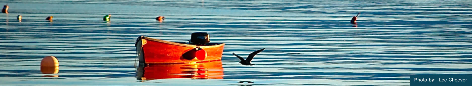 Image is of a red boat on the water.