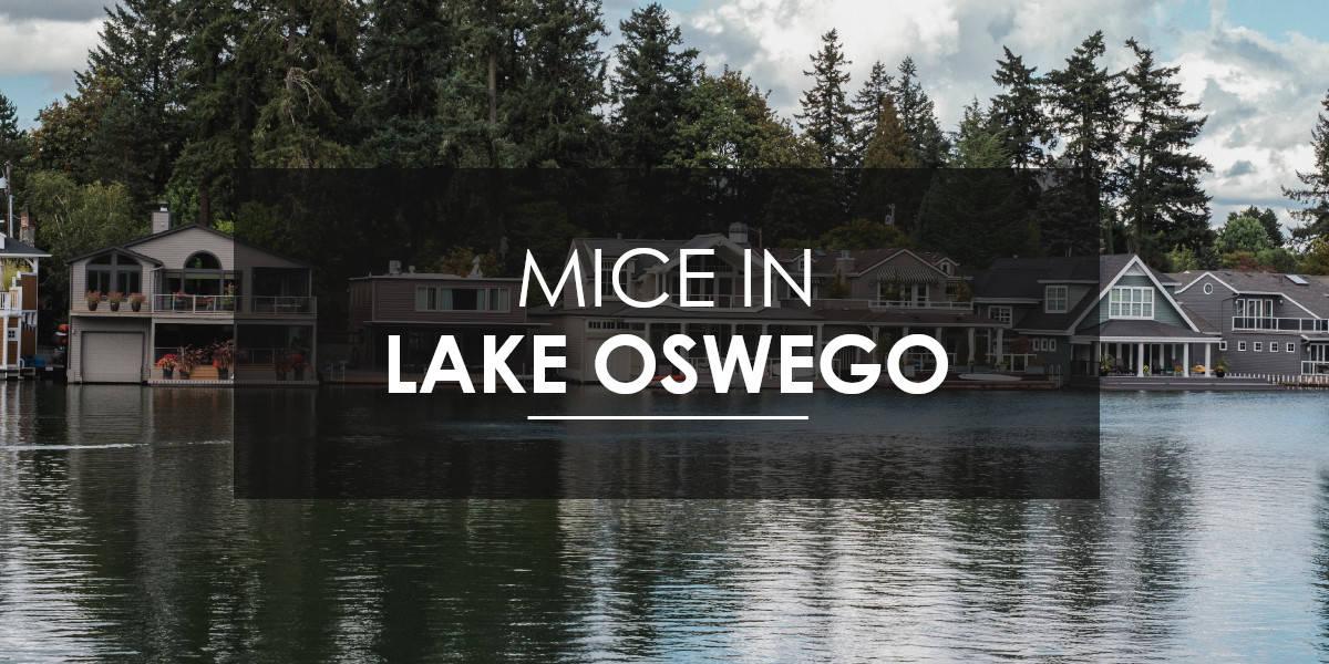 Mice control Lake Oswego