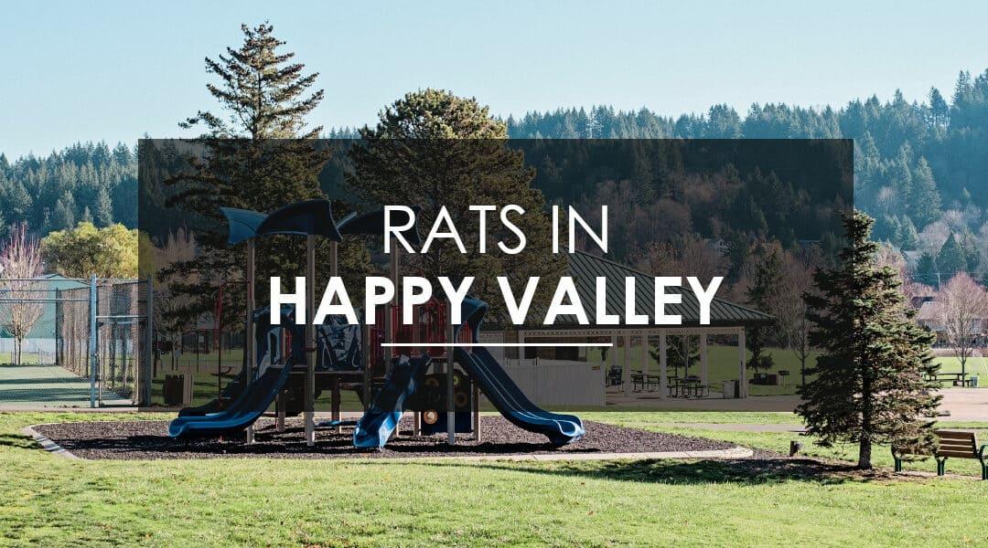 Rat Control in  Happy Valley