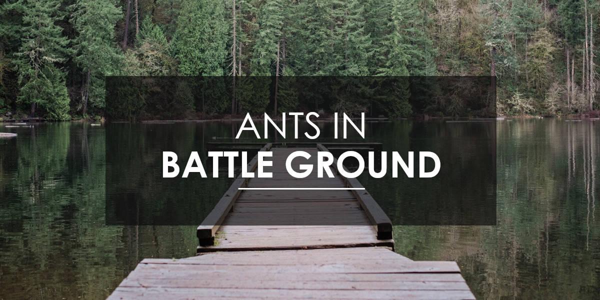 Ant control Battle Ground