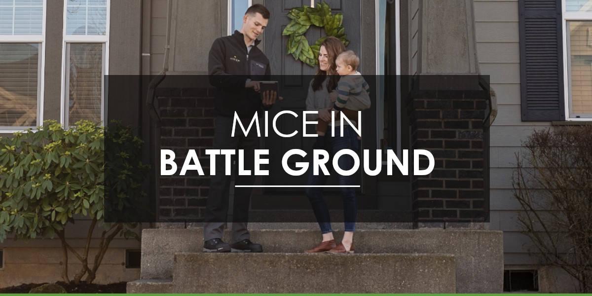 Mice in Battle Ground