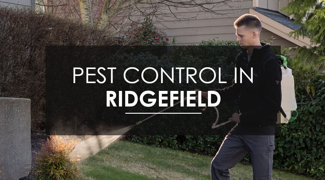 Quarterly Pest Control Services: Why homeowners in Ridgefield Choose the Home Protection Plan