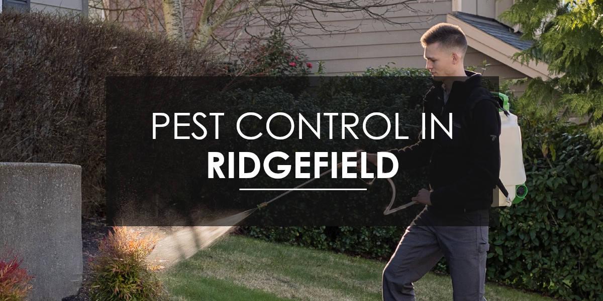 Quarterly Maintenance in Ridgefield