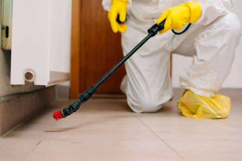 pest control tech sprays for pest in home