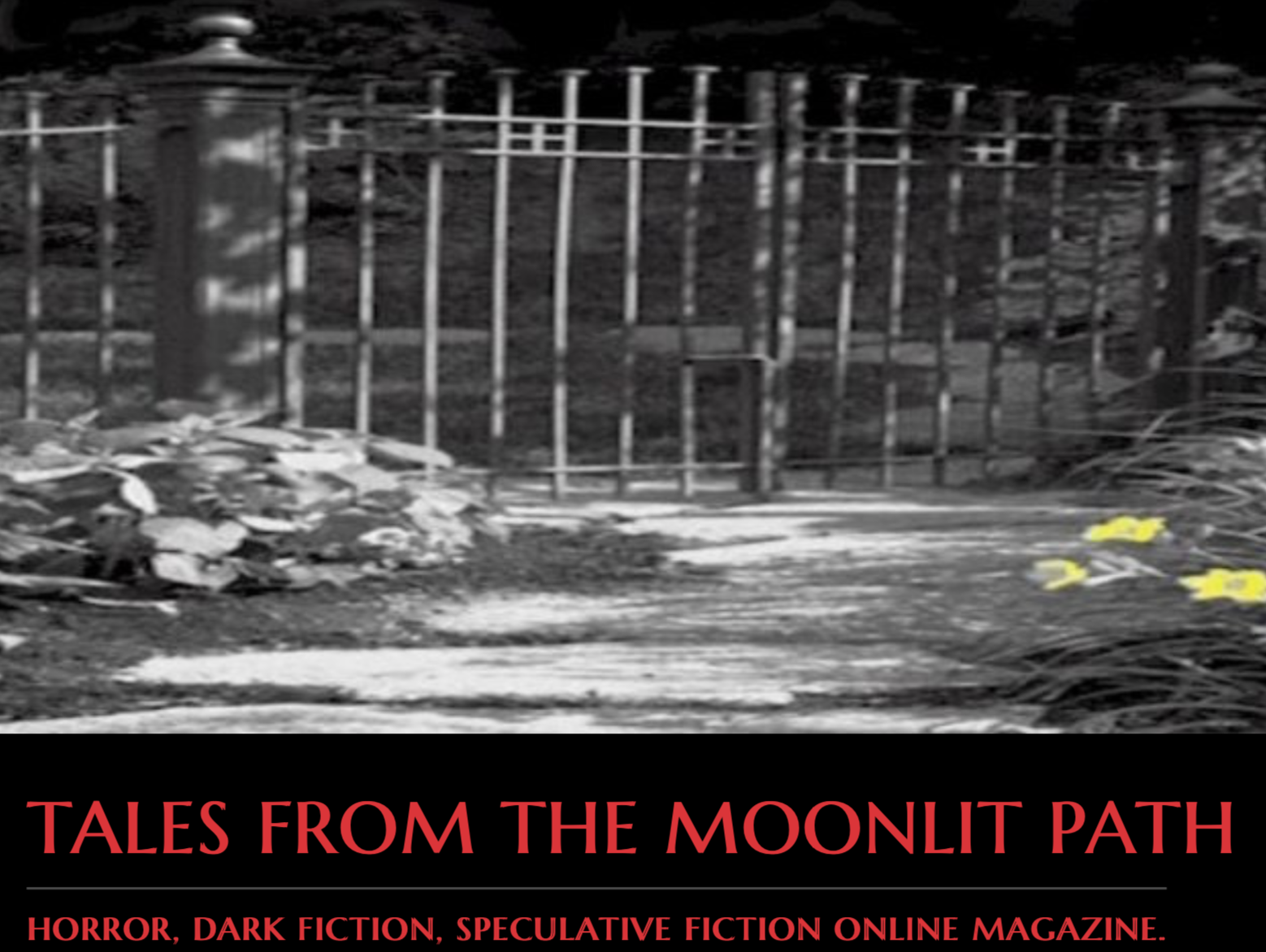 Tales from the Moonlit Path