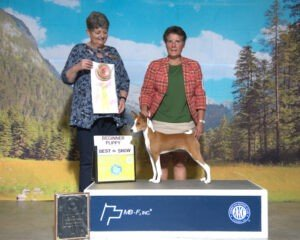 BEST in SHOW Under 4 & 6 Months Upper Potomac Valley Kennel Club