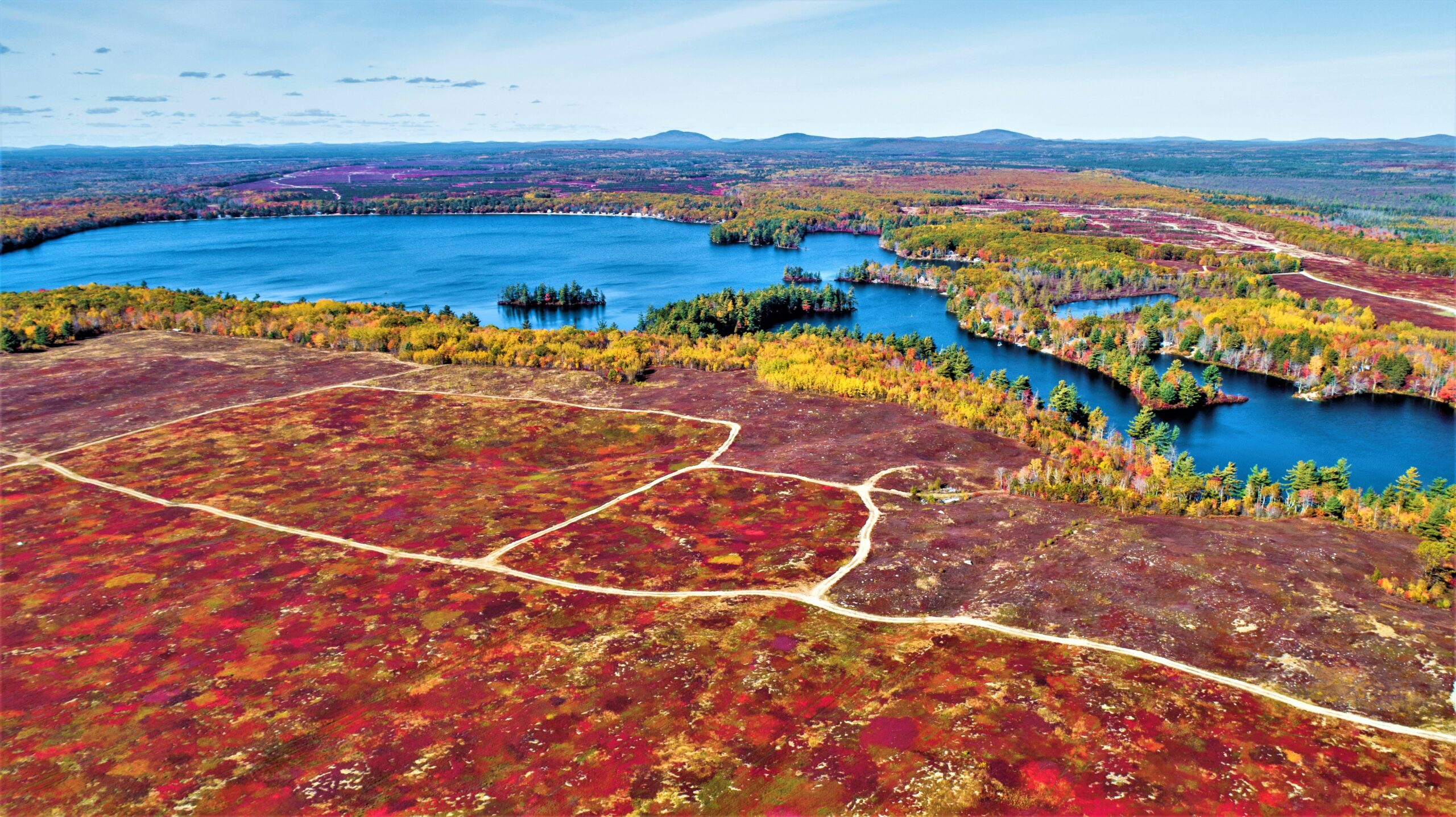 Schoodic-Lake-Mid-October-Blueberry-Barrens-Columbia-Falls-Maine-390-note-cards-1-1