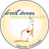 Ferret Dreams Rescue & Adoption