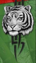 Mountain Tiger Society