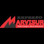 marvisur-logo