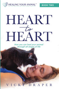 Heart to Heart book cover image