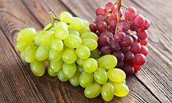Grapes_1
