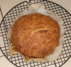 bread_web