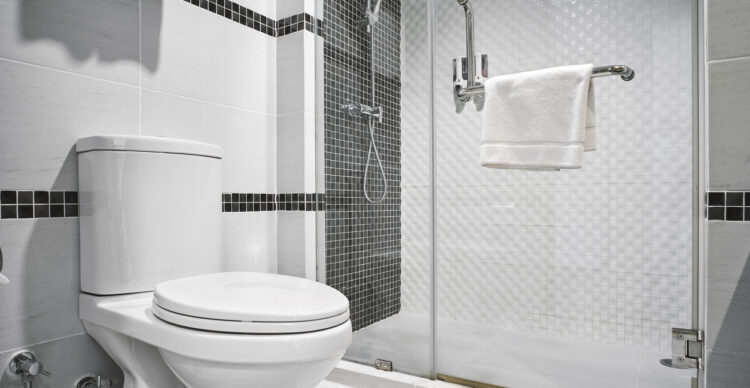Causes of a Leaky Toilet: What to Do?
