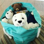 Childhood stuffed animals and new ones comprising a stuffed bear, stuffed dog and a stuffed seal in a Billabong Australia tote
