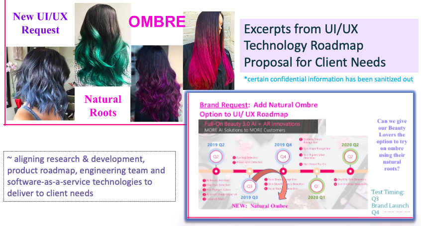 Excerpts from product roadmap alignment proposal for new functionality