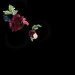 So pretty logo_shadow_FINAL_r.7.2019