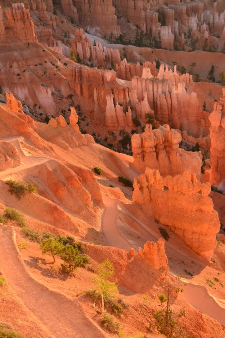 """Sunrise, Bryce Canyon, National Park"""