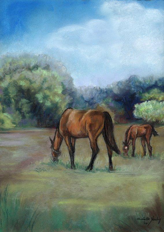 """""""Horse Pasture"""" - pastel"""