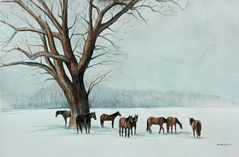 """""""Horses in the Snow"""""""