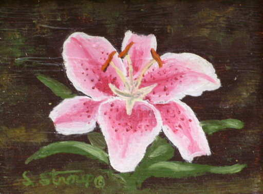 """""""Lily"""" SOLD"""