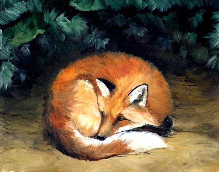 """""""Red Fox"""""""