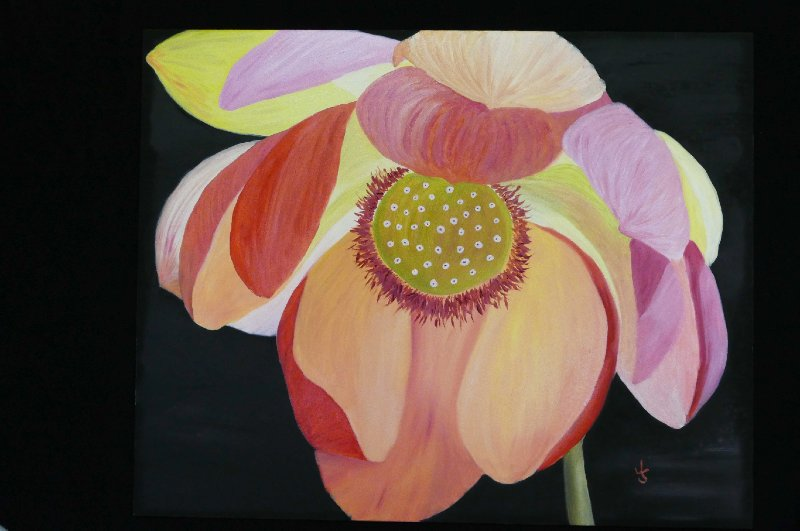 """The Headmistress-Lotus on Raw Silk Backdrop"", Oil, 16x20"