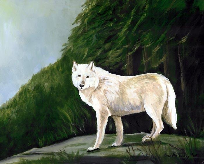 """""""White Wolf"""""""