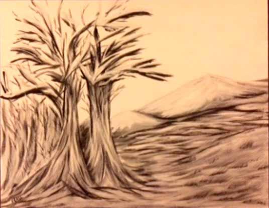 """""""Barren Mountain"""""""