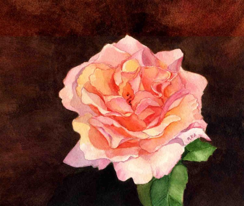 """""""Everblooming Rose"""""""