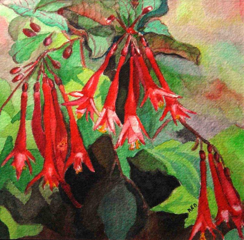 """Fuchsia Tapestry"""