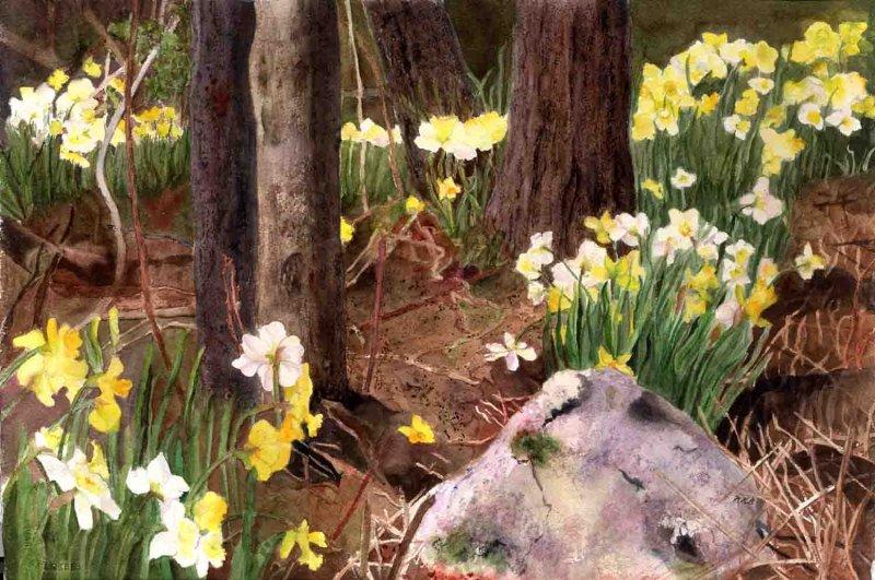 """Hope of Spring"""