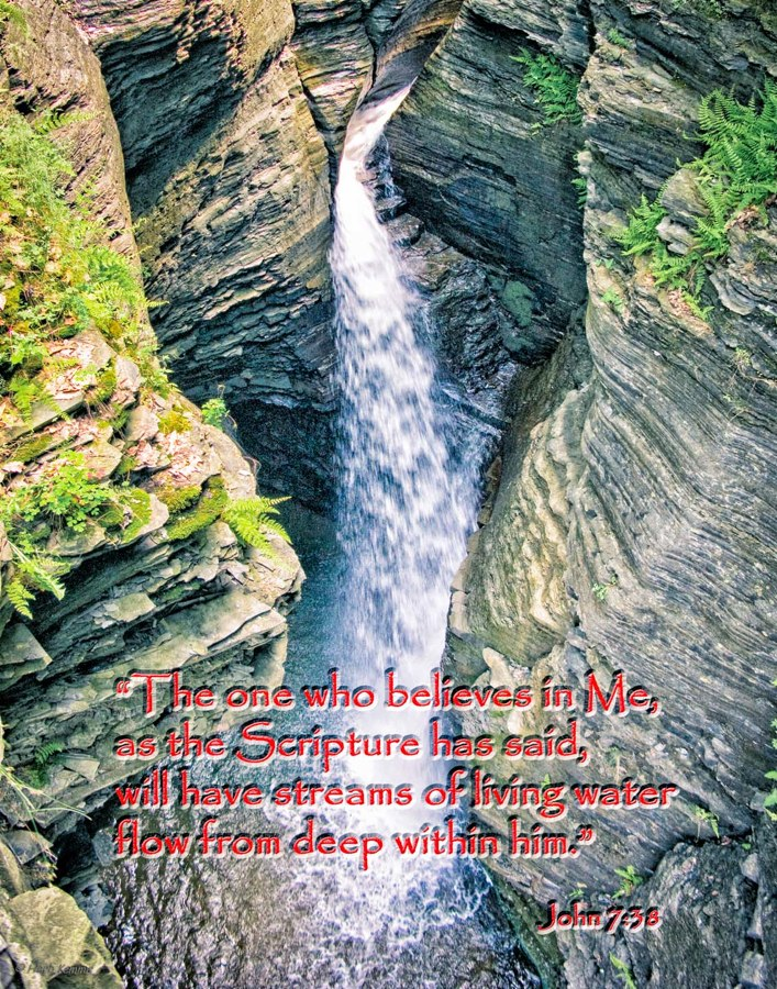 """""""Living Water"""""""